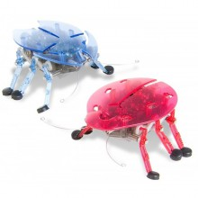 HexBug Original Echo