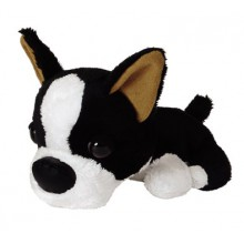 Doudou The Dog Boston Terrier